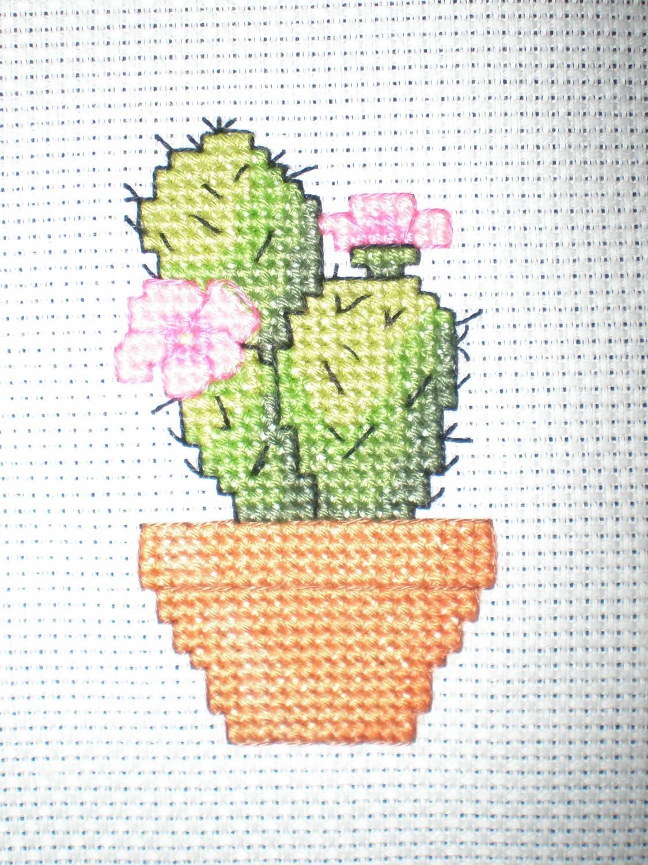 Схемы вышивки с кактусами 829